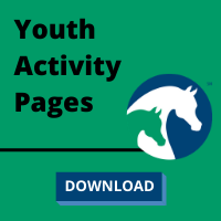 Youth Activity Pages Button